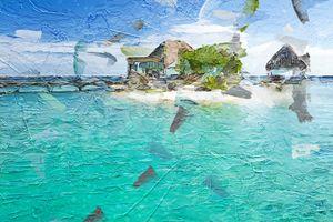 Roatan Paradise