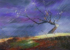Storm in purple