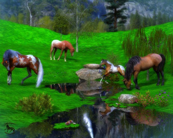 North Pasture - Mystique Gallery