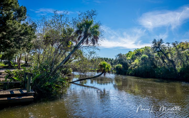 St Lucie River 2 Signed - ccgrin