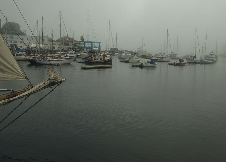 Foggy Harbor - Painting with Light
