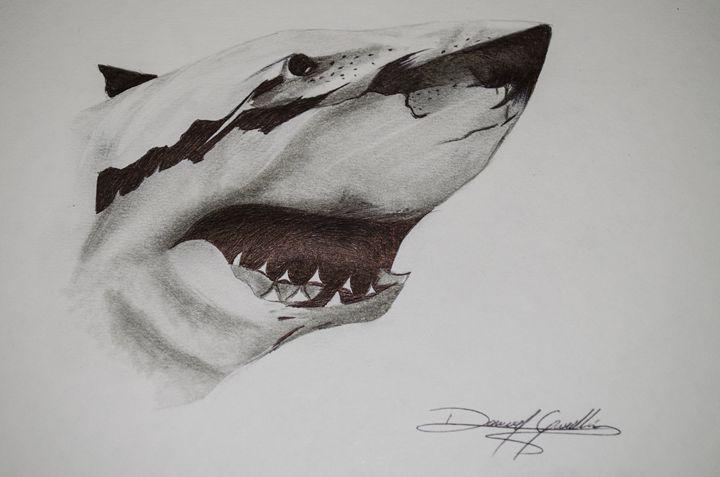 Pencil Shark - Daniel Guillen