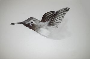 Hummingbird Pencil