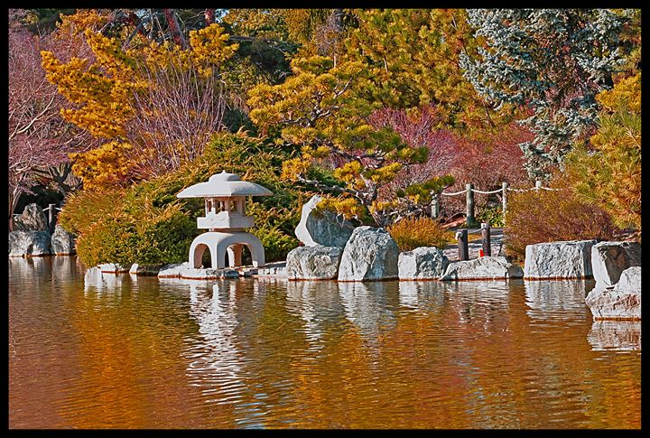 Japanese Garden - Capturing Life