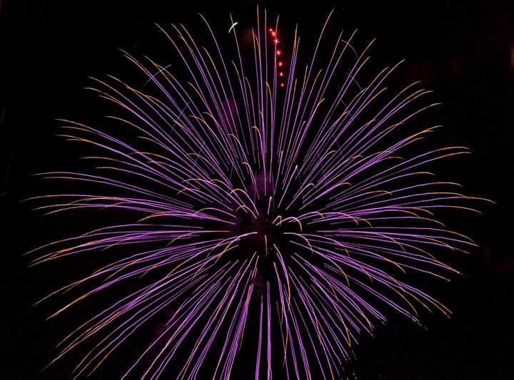 Purple Firework - Capturing Life