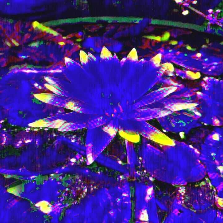 Flower zone - Abstracto21