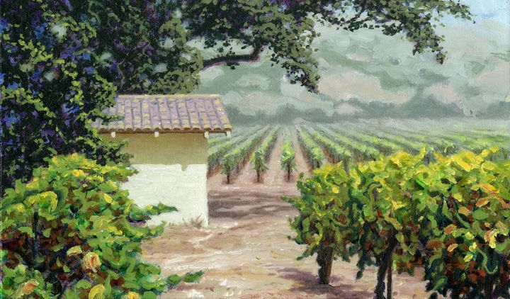 Vineyard Tool Shed - Carl Downey Art Gallery