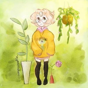 Aesthetic Pearl