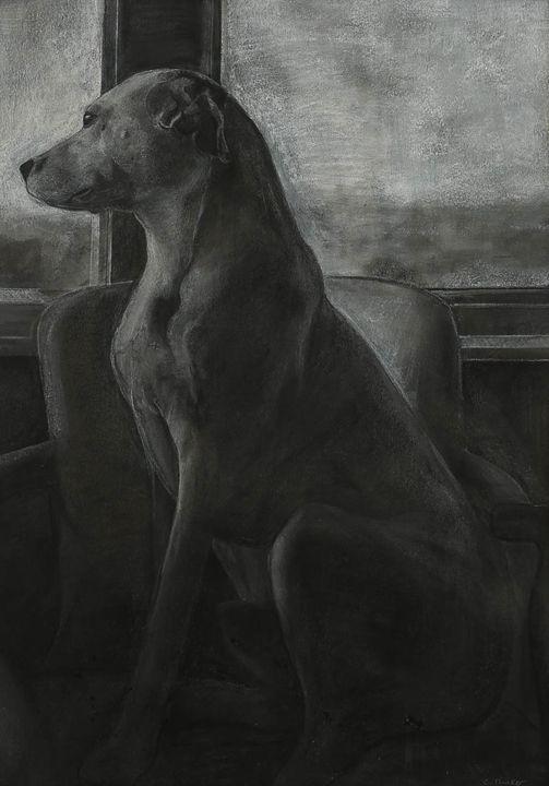 Seated Dog - C Drake