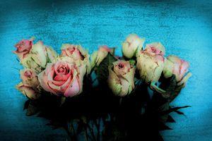 Roses I...