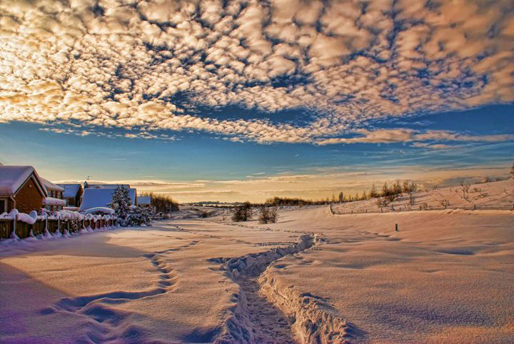 Snow View... - Andy Milner Photography