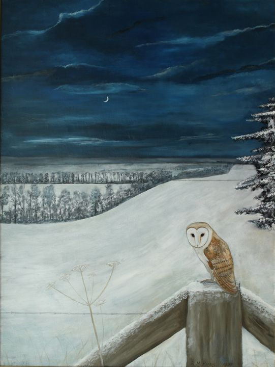 A Barn Owl by the Ridgeway - Robert Harris