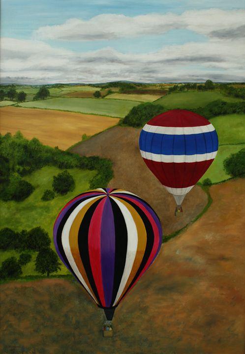 Balloons over Fields - Robert Harris