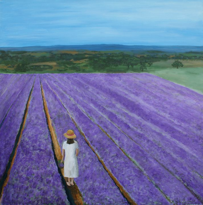 Lavender Field - Robert Harris