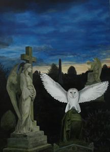 Angels and Barn Owl