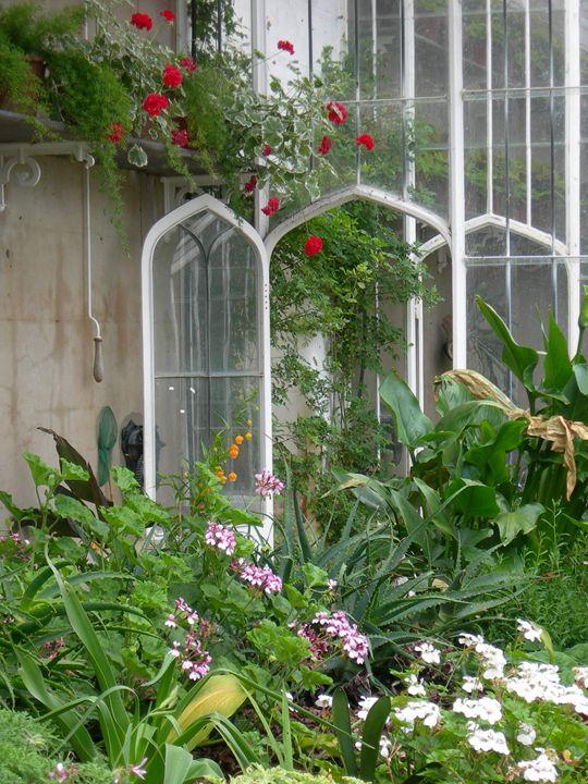 Old Greenhouse - Robert Harris