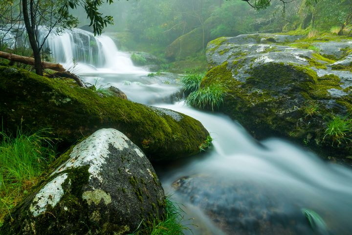 Waterfall on raining forest - César Torres