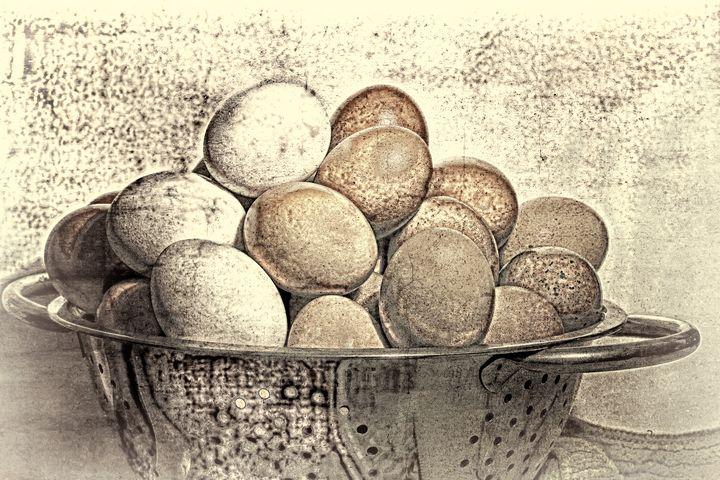 Fresh Eggs - ConniePublicover