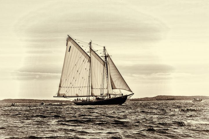 Bluenose 2 - ConniePublicover