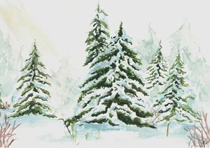 Winter Fir Trees - Jayme Hunt