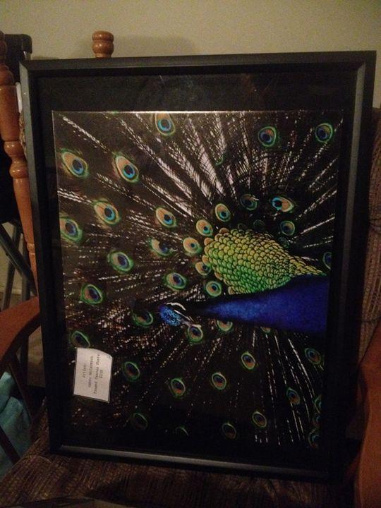 Peacock - Phoniex Home