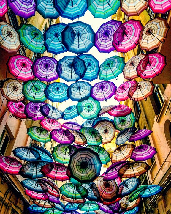 Colorful Umbrellas - Roxana