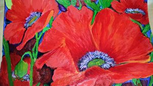 Poppies for Georgia O'Keeffe