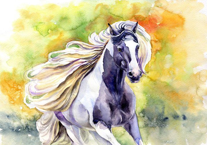 Gypsy Vanner horse - Veronica_Marits