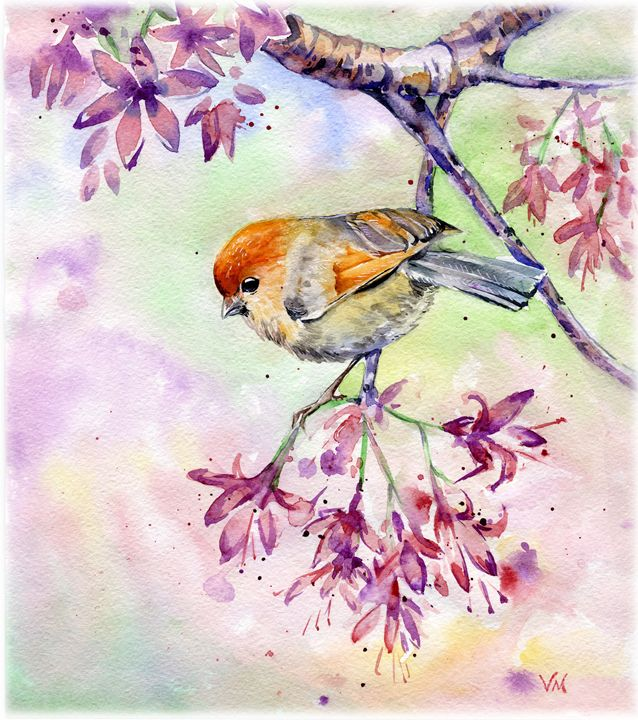 Spring bird - Veronica_Marits