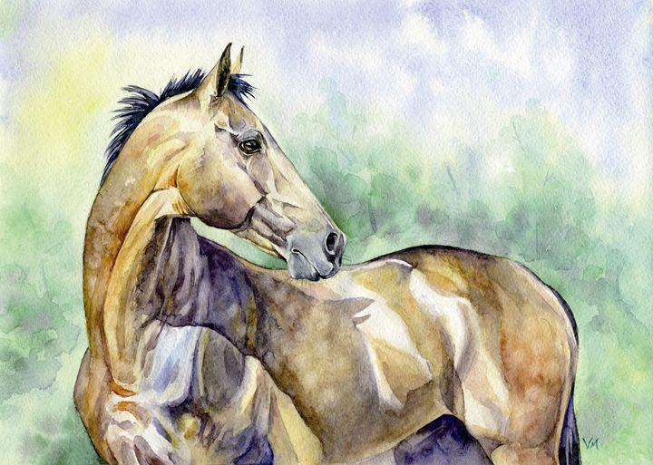 Akhalteke horse - Veronica_Marits