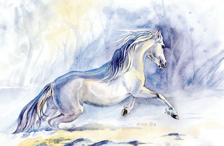 Winter pony - Veronica_Marits