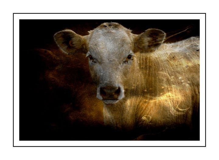 Friendly Cow - Corinne's Prints n things