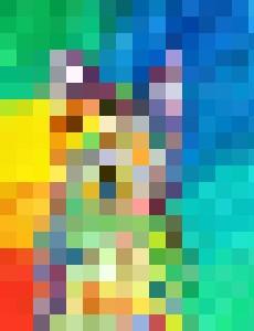 Color Cat - Katie