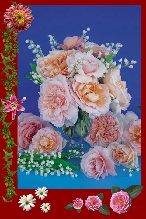 Flowers - GR PICTURES
