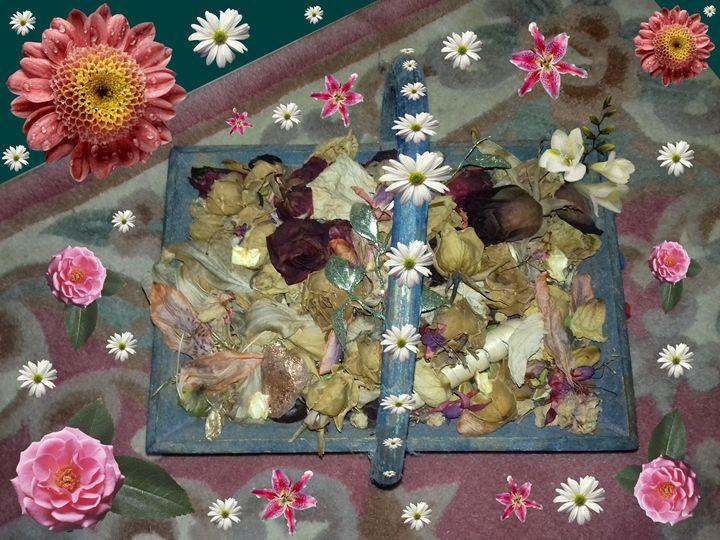 Petals - GR PICTURES