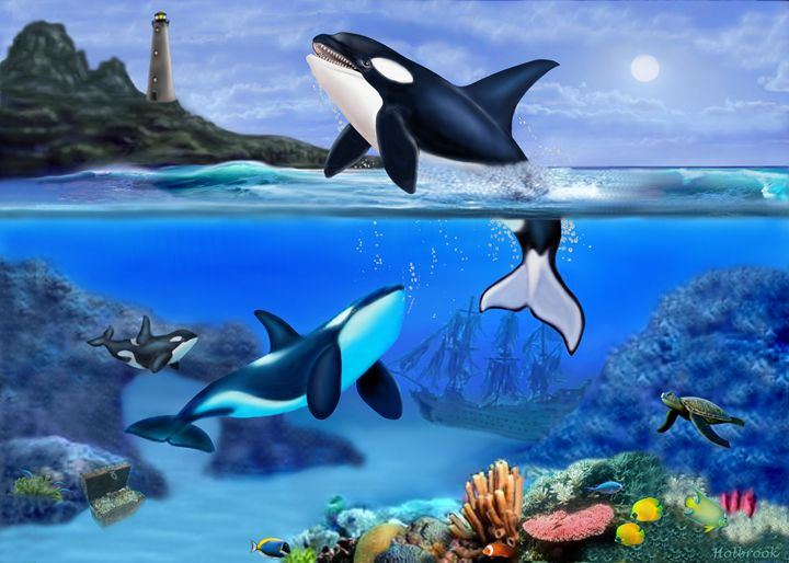THE ORCA FAMILY - HOLBROOK ART PRODUCTIONS