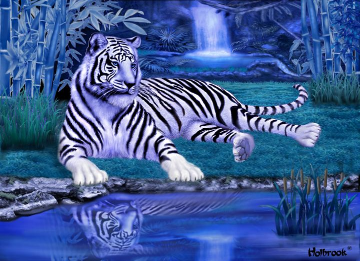 JUNGLE TIGER OF THE NIGHT - HOLBROOK ART PRODUCTIONS