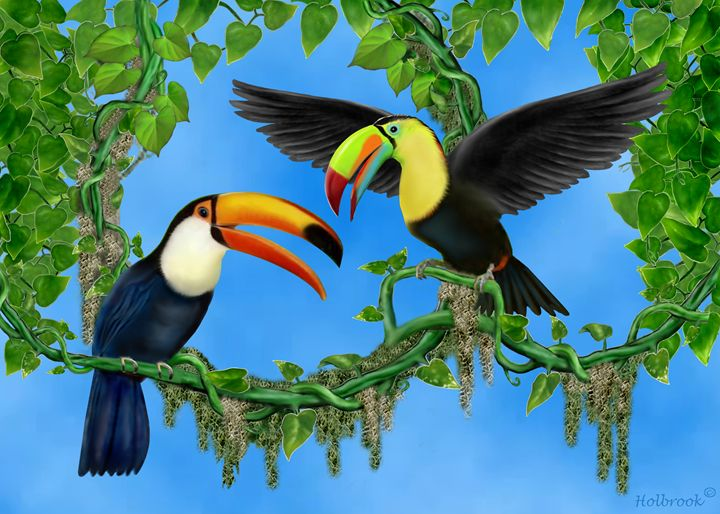 TOUCAN PLAY - HOLBROOK ART PRODUCTIONS