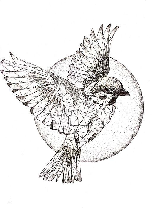 Birds Flying High Triangulation Drawings