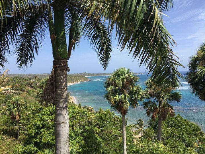 Dominican Beaches - Ryan Otto Art