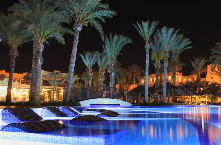 Poolside Palm Trees Nightscene - Donny R. Coutu
