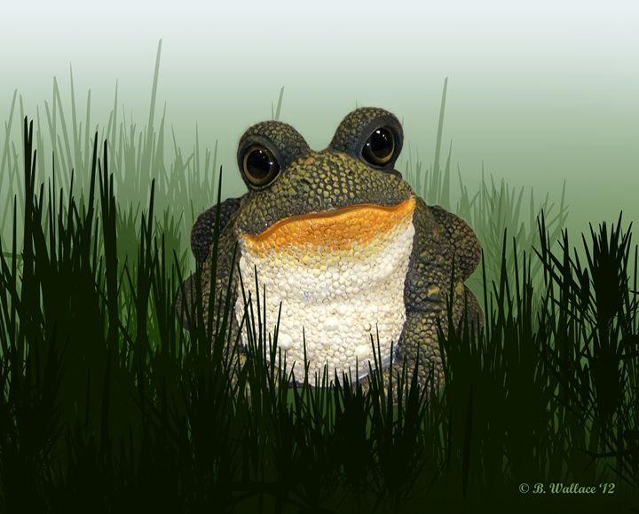 King Frog - Brian Wallace