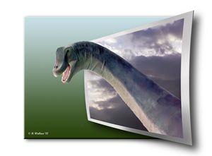 Dinosaur - OOF - Brian Wallace