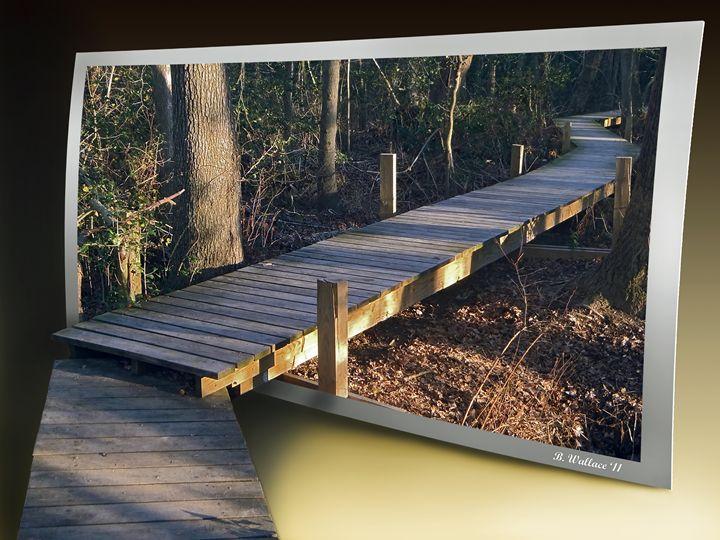 Walk Bridge - Brian Wallace