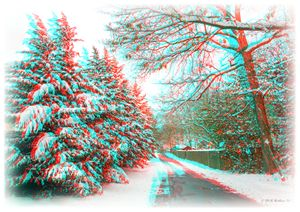 Snowy Lane - 3D Glasses Required - Brian Wallace