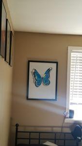 BEAUTIFUL BLUE BUTTERFLY 3D
