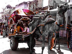 Cultural Colors - Puru's Picture Gallery!