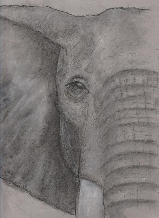 Elephant - Jen Hallbrown Art