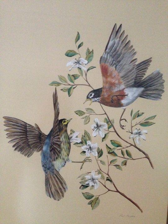 two australian birds: Paul Margocsy - Baldock