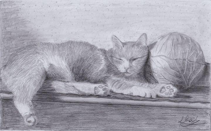 cute sleeping cat 2 - Raluca Feresteanu